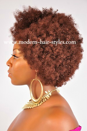 Crochet Braids Jersey City : Black Natural Hair Styles that are Great for Transitioning, Protective ...