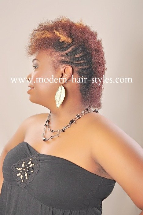 Black Natural Hair Styles For Transitioning And