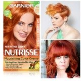 All Garnier Hair Color lines Evaluated